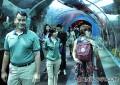 Experiencing Resorts World Sentosa's S.E.A. Aquarium Ocean Dreams programme – a finalist for the 2014 Singapore Experience Awards