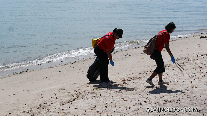 Why we made Asher spent his 5th birthday picking trash at the beach with Young NTUC - Alvinology