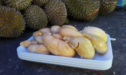 Meet the Top 7 Durian Sellers in Singapore