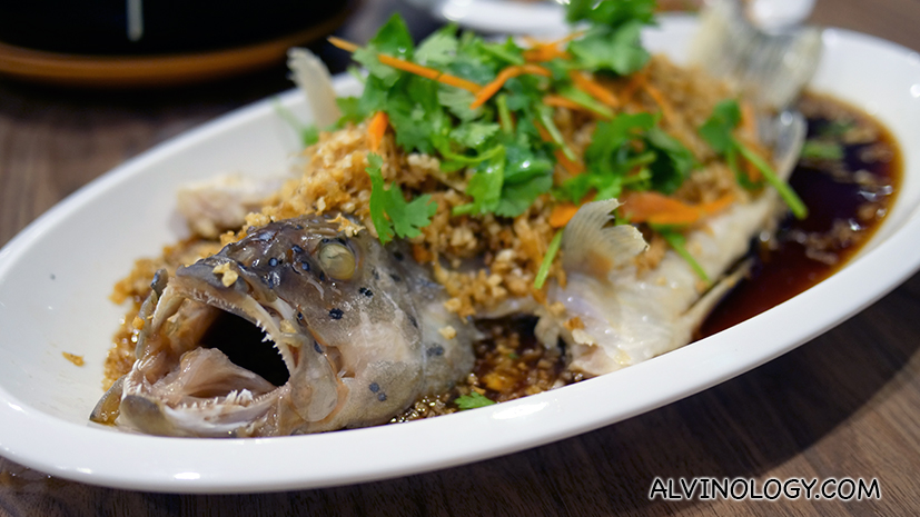 "菜脯蒸红斑 ""Chye Poh"" Steamed Fish"