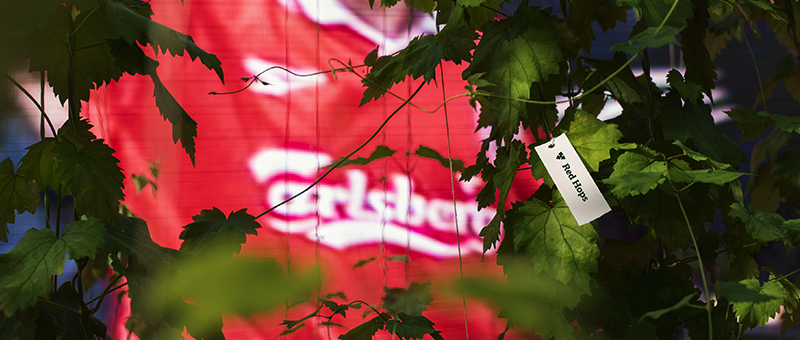 One day left to win a VIP trip to Anfield, UK to see the Liverpool FC team train and take on Chelsea, thanks to Carlsberg