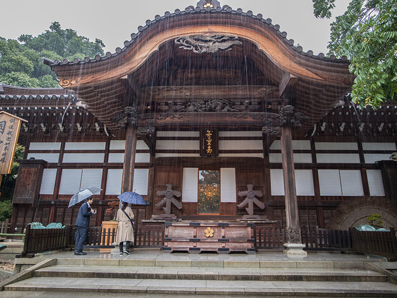 A Tale of Two Cities: Tokyo x Tottori - Alvinology