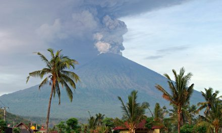 Hotels and restaurants in Bali grant tourists free accommodation during airport closures