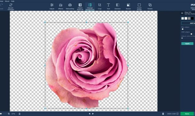 Photo-editing Hack: Changing Backgrounds for Photographs for FREE With Movavi Photo Editor