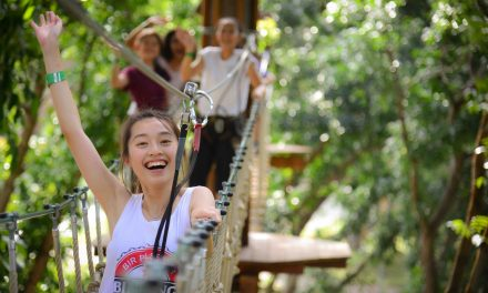 Forest Adventure at Bedok Reservoir Park – Singapore's First and Only Treetop Obstacle Course is now Bigger and Better