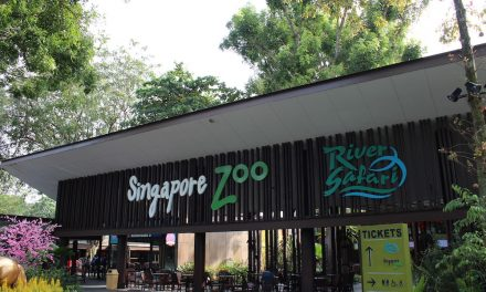 Here are 45 things to mark 45 magical years at the Singapore Zoo!