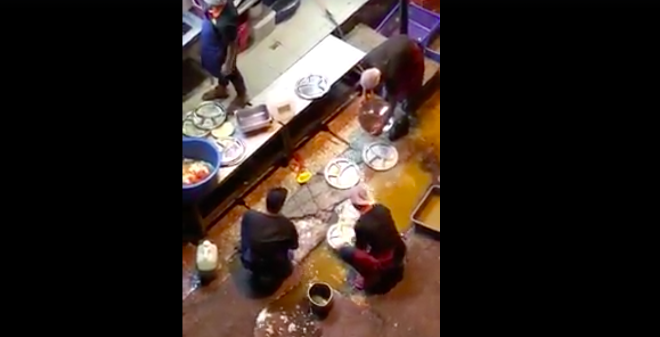 Malaysian Raj's Banana Leaf Restaurant workers filmed washing dishes in the gutter, offering free dinner - Alvinology