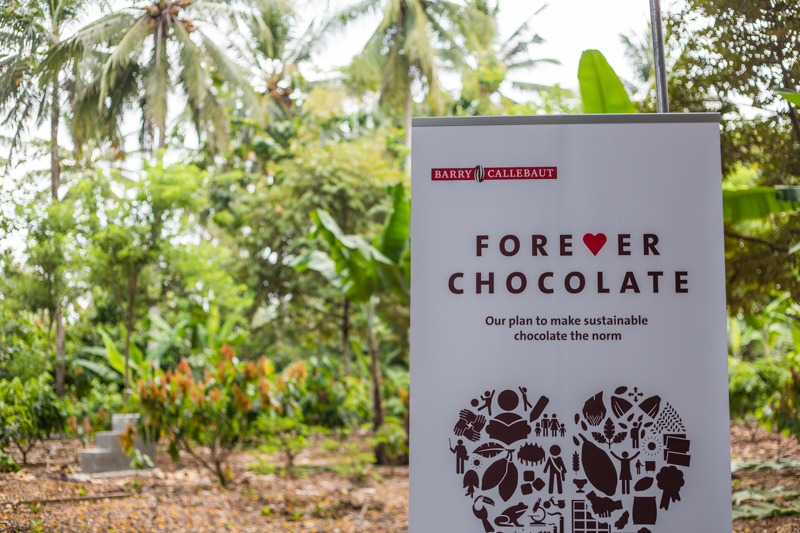 Barry Callebaut: Chocolate with a Heart - Alvinology