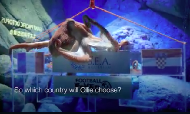 Watch Resort World Sentosa's Ollie the Octopus predict the World Cup winner