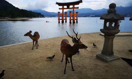 Experience Hiroshima, Ehime and Okayama – Japan's Mediterranean region (Part 1: Hiroshima)