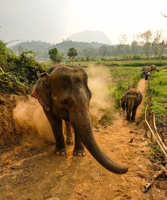 Laos – A Land Waiting to be Discovered