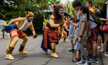 Experience Disney's The Lion King in real-life at the Singapore Zoo and Night Safari