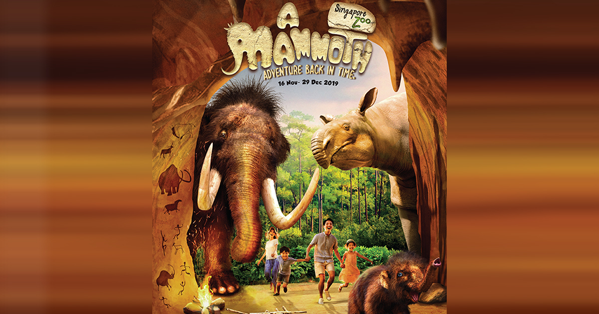 [PROMO INSIDE] Meet Mammoths – Here's all the fun you can participate in at Singapore Zoo this holiday season - Alvinology