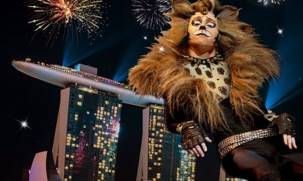 Cuddle up to CATS the musical this Christmas