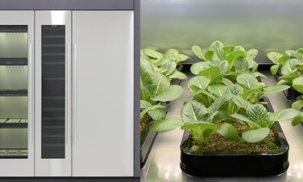 LG Appliance develops first indoor vegetable cultivator – grow wholesome foods at home