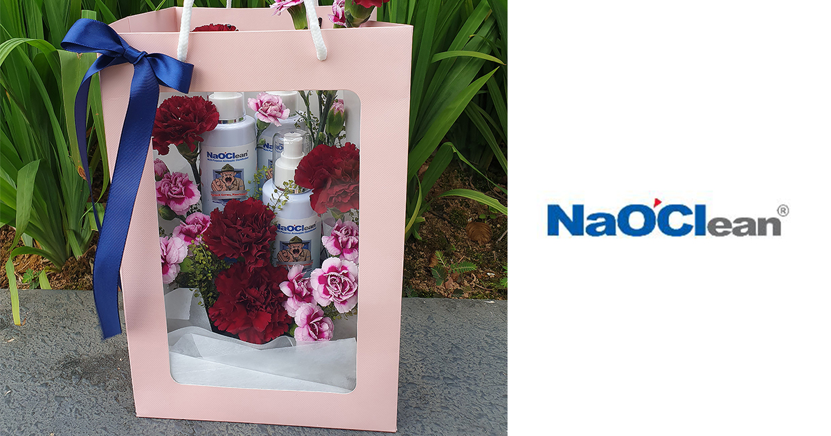 Flowers are good, but a Box of Sanitisers is probably the Best Gift for Mom this Mother's Day – check out this cool gift idea
