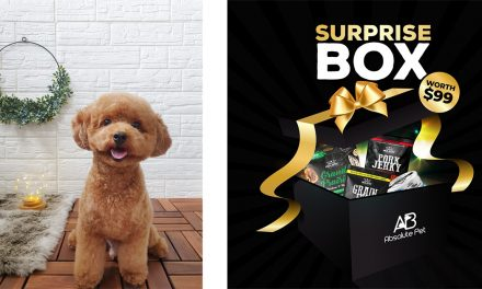 [EYES HERE] Pets Sale is happening on Shopee this 28 April offering up to 65% off on pet products
