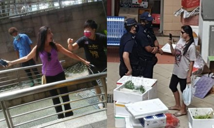 'Sovereign' or 'Ramesh's Wife'? Police arrest Shunfu Mart woman, netizens react