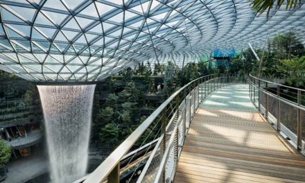 Enjoy 3 months of unlimited access to the various attractions in Jewel Changi Airport!
