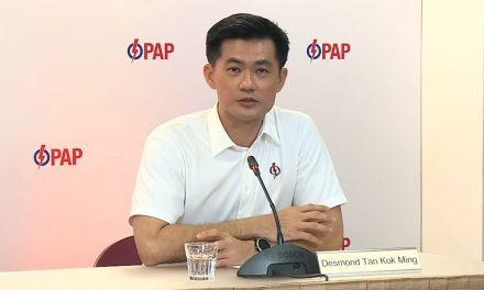 Who is Desmond Tan of PAP and why do soldiers endorse him?