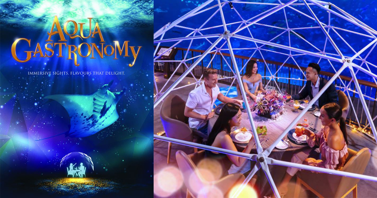 This new Resorts World Sentosa attraction lets you dine underwater for only S$118 – Singapore's first and only underwater dining experience - Alvinology
