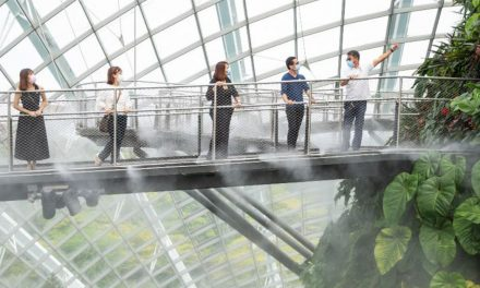 [PROMO] Gardens by the Bay Cloud Forest to reopen on 6 August – free admission for nurses and a special ticketing promotion for all!