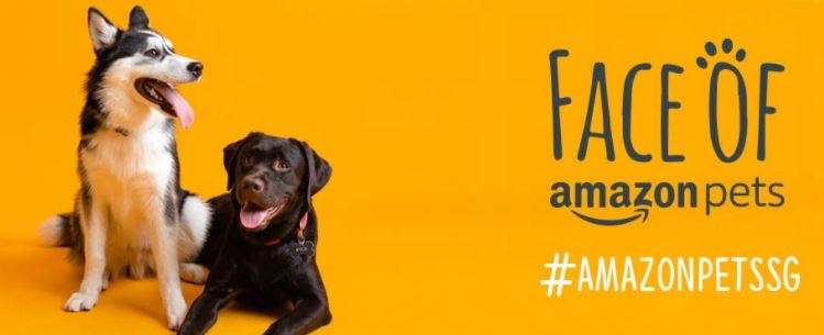 Face of Amazon Pets Contest – win a chance for your pet to be featured on Amazon, plus walk away with over $1,500 worth of prizes!