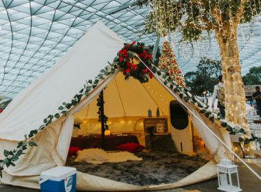 Changi Festive Village is here offering extraordinary experiences including Glamping Under the Stars, Dinosaur Displays, and more! Here's everything you need to know – - Alvinology