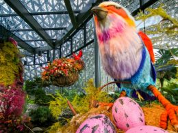 A woodland wonderland awaits visitors as Gardens by the Bay's Floral Fantasy reopens! - Alvinology